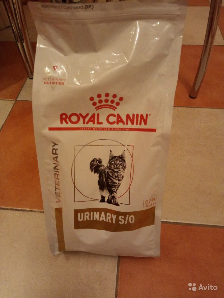 Корм для кошек Royal Canin Urinary S/O + лекарства