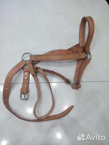 Снаряжение для лошади 89277414522 купить 1