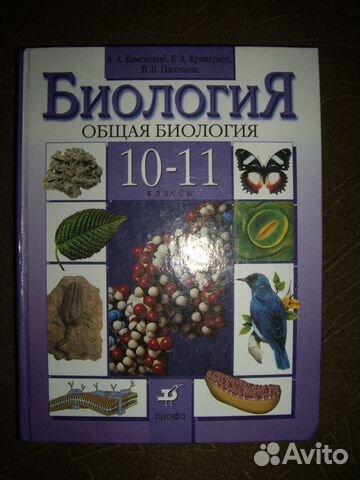 Без игры нет жизни ранобэ читать на русском