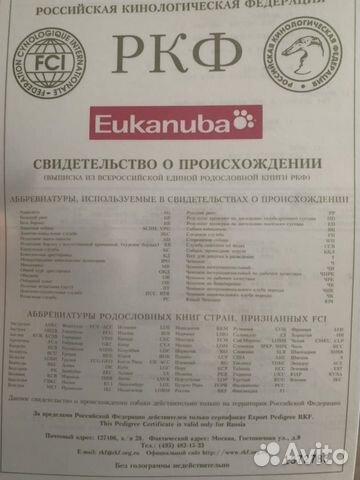 Среднеазиатская овчарка купить на Зозу.ру - фотография № 10