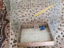 Клетка под попугаев