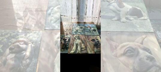 Картинки с изображением собак купить в Владимирской области с доставкой   Товары для дома и дачи   Авито